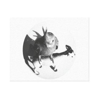 Cockatiel en círculo del bw de la cabra impresión en lienzo