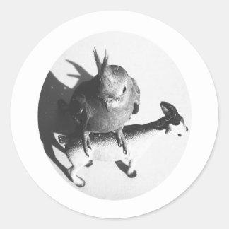Cockatiel en círculo del bw de la cabra pegatina redonda