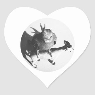Cockatiel en círculo del bw de la cabra pegatina corazon personalizadas