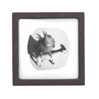 Cockatiel en imagen blanco y negro de la cabra de cajas de regalo de calidad