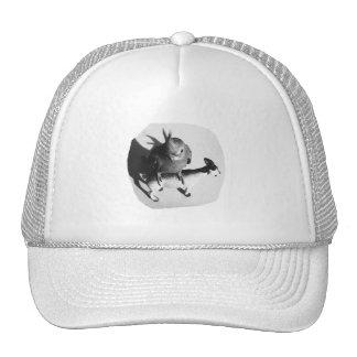 Cockatiel en imagen blanco y negro de la cabra de  gorros