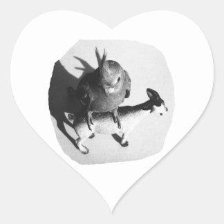 Cockatiel en imagen blanco y negro de la cabra de colcomanias corazon personalizadas