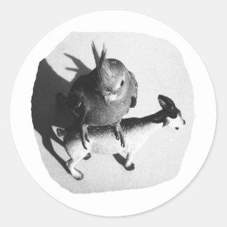 Cockatiel en imagen blanco y negro de la cabra de etiquetas redondas