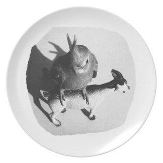 Cockatiel en imagen blanco y negro de la cabra de  plato para fiesta