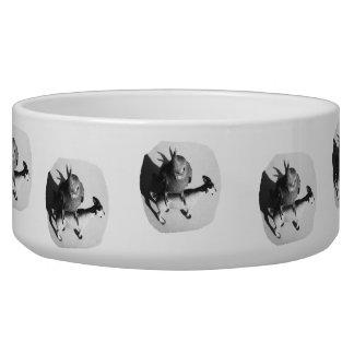 Cockatiel en imagen blanco y negro de la cabra de  tazón para perro