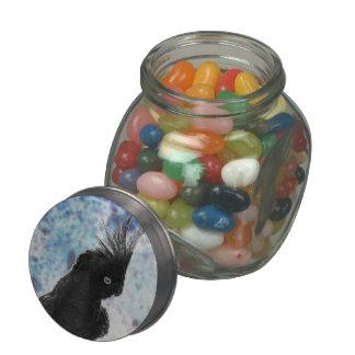 Cockatiel negativo frascos de cristal