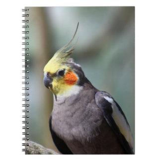 Cockatiel Spiral Note Book