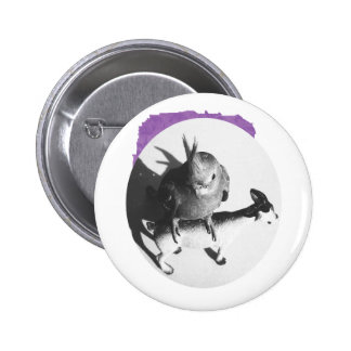 Cockatiel on goat bw circle 2 inch round button