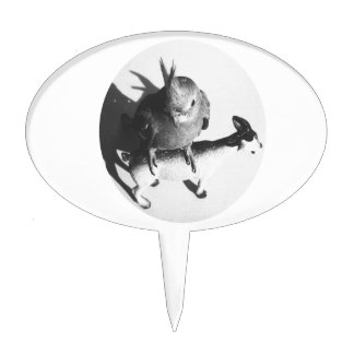 Cockatiel on goat bw circle cake toppers