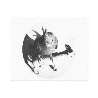 Cockatiel on goat bw circle canvas print