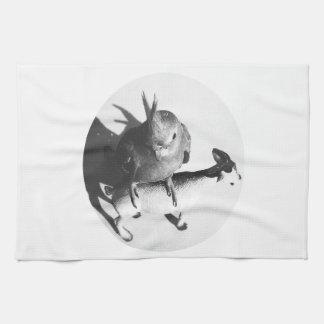 Cockatiel on goat bw circle kitchen towels