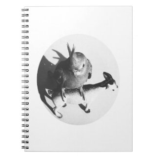 Cockatiel on goat bw circle notebook