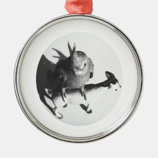 Cockatiel on goat bw circle round metal christmas ornament