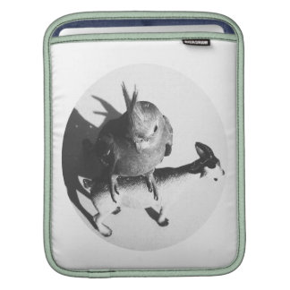Cockatiel on goat bw circle sleeve for iPads