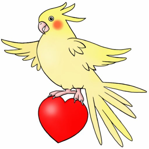 Cockatiel on Heart - Photo Sculpture Cutout