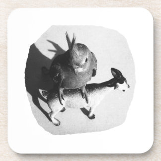 Cockatiel on rubber goat black and white picture coaster