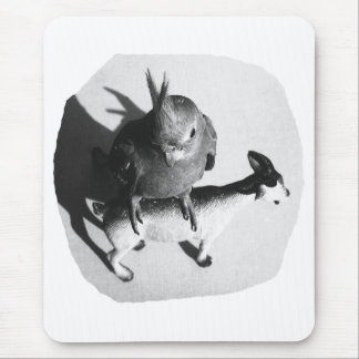 Cockatiel on rubber goat black and white picture mouse pad