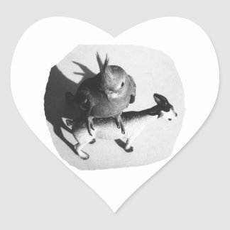 Cockatiel on rubber goat black and white picture heart stickers