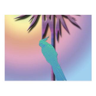 Cockatiel on Tropical Palm Digital Art Postcard