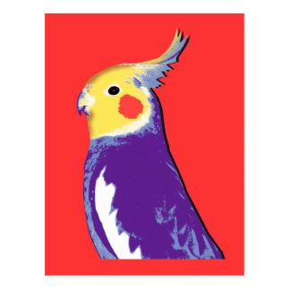 Cockatiel Pop Art Postcard