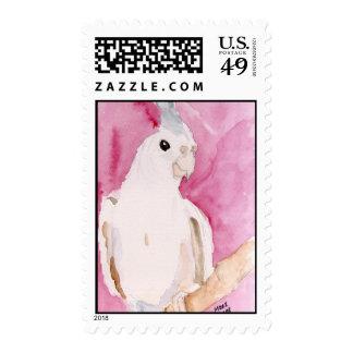 cockatiel postage