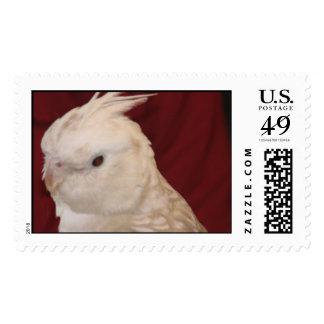 Cockatiel Stamp