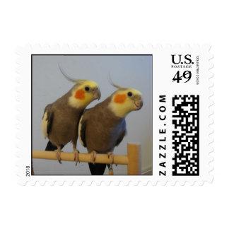 cockatiel stamps