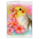 Cockatiel With Frangipani Realistic Painting Greeting Card