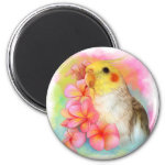 Cockatiel With Frangipani Realistic Painting Magnet
