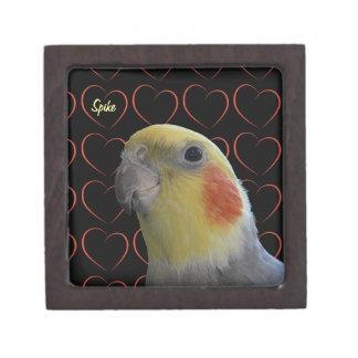 Cockatiel y corazones lindos caja de regalo de calidad