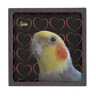Cockatiel y corazones lindos caja de recuerdo de calidad