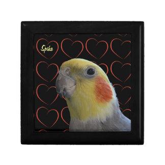 Cockatiel y corazones lindos cajas de recuerdo