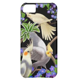 Cockatiels en caso del iPhone de las nomeolvides Funda Para iPhone 5C