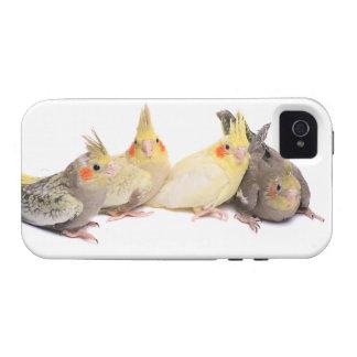 Cockatiels Case-Mate iPhone 4 Carcasas