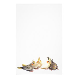 Cockatiels Personalized Stationery