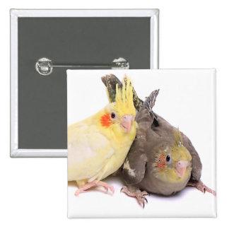 Cockatiels Pin Cuadrado