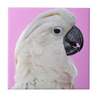Cockatoo Bird Portrait Tile
