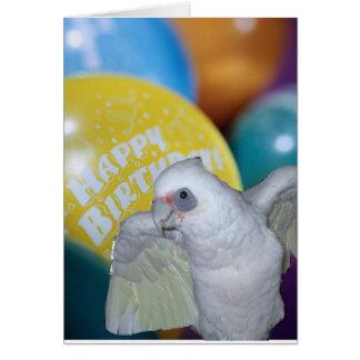 Cockatoo Birthday Card