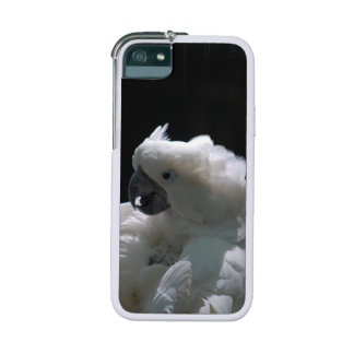 Cockatoo iPhone 5 Cover