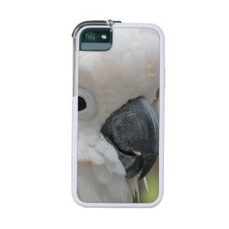 Cockatoo iPhone 5/5S Case