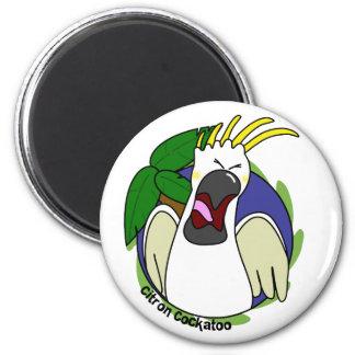 Cockatoo cítrico de griterío divertido imán redondo 5 cm