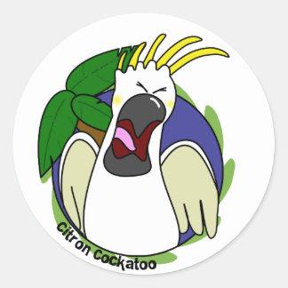 Cockatoo cítrico de griterío divertido pegatina redonda