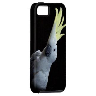 Cockatoo iPhone SE/5/5s Case