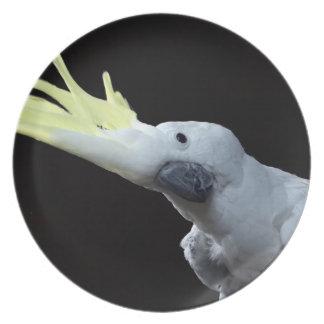 Cockatoo Melamine Plate