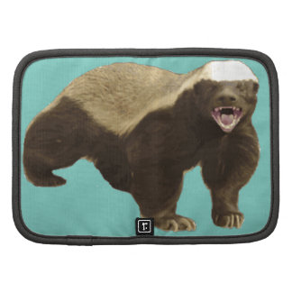 Cockatoo Mint Honey Badger Don't Care Pattern Organizers