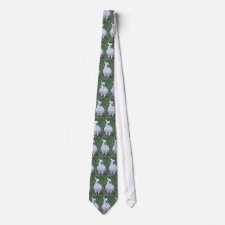 Cockatoo Neck Tie