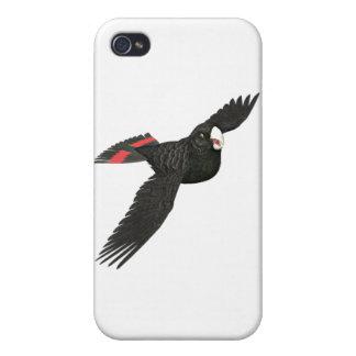 Cockatoo negro atado rojo iPhone 4/4S carcasas