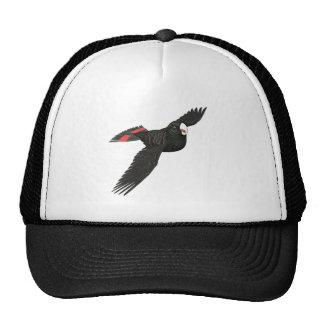 Cockatoo negro atado rojo gorras de camionero