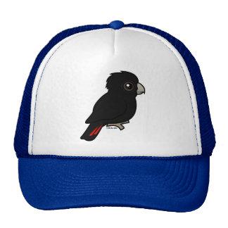 Cockatoo negro Rojo-atado Gorras