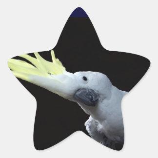 Cockatoo Pegatina En Forma De Estrella